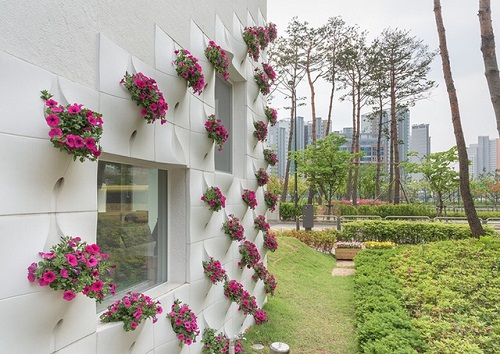 thiết kế vườn tường sáng tạo