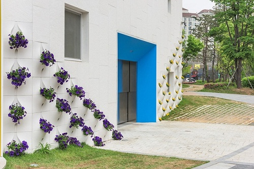 thiết kế vườn tường cho ngôi nhà