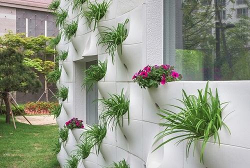 thiết kế vườn tường cho ngôi nhà của bạn