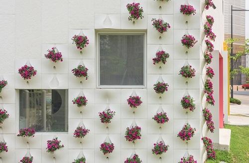 thiết kế vườn tường cho ngôi nhà đẹp hơn